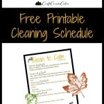 Get Organized Week 3-Clean House Tips