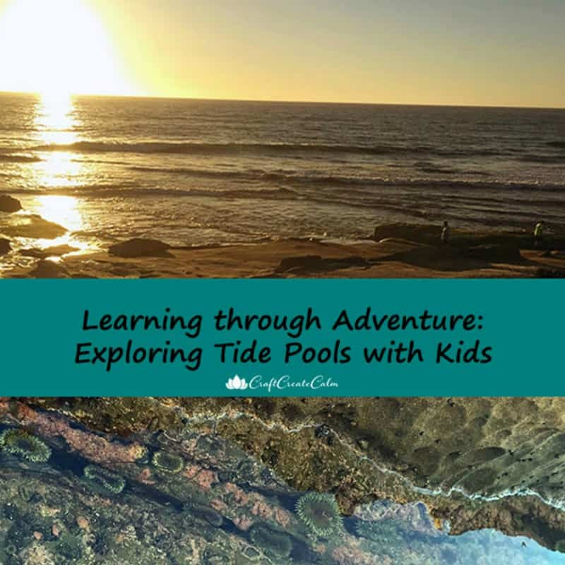 Exploring Tide Pools with Kids+Free Printable