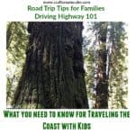 10 Road Trip Tips for Driving Highway 101