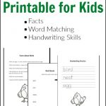 Bird Unit Study Printables for Kids