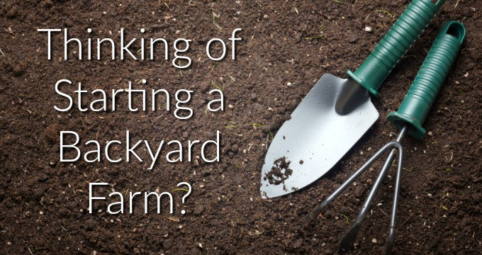 Thinking of Starting a Backyard Farm?