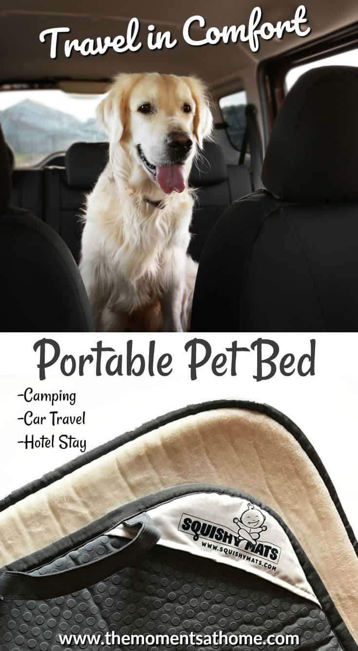The Squishy Mat pet bed is great for travel because of its portable handle and comfort for pet. Pet travel pet for hotels, camping or car travel with pets.