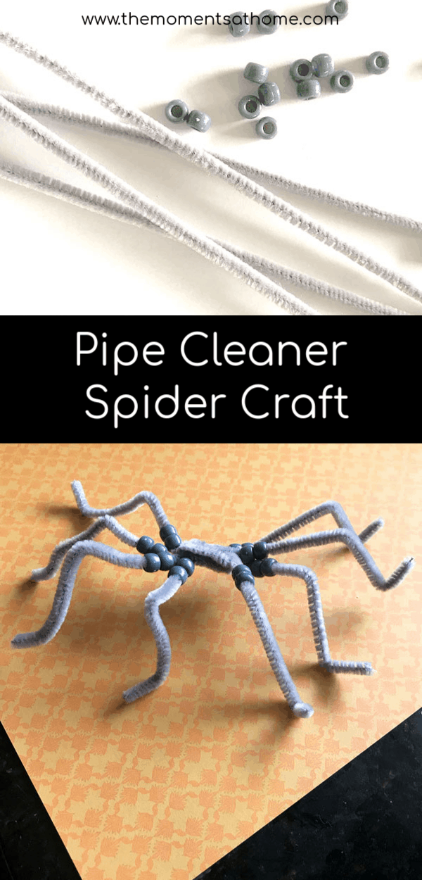 Pipe cleaner spider craft for kids. Make a simple craft for kids this fall using beads and pipe cleaners. #spidercrafts #fallcraftsforkids
