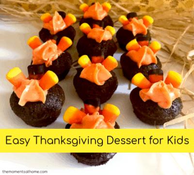 Mini Turkey Treats Thanksgiving Dessert for Kids