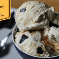 Chunky Peanut Butter Swirl Ice Cream ( Low Carb, Keto, THM)