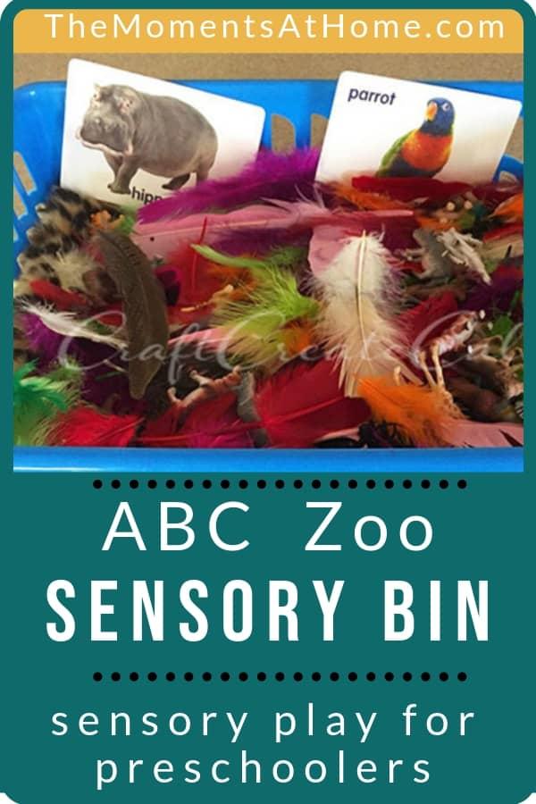ABC Zoo sensory bin for preschool children that teaches textures, names, letters, and more. | #sensory #preschooler