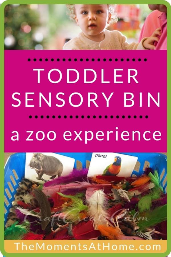 toddler sensory bin ideas: zoo