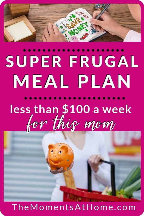 frugal grocery shopping trip less than $100 with grocery woman and piggy bank